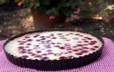 Raspberry_lemon_tart_4