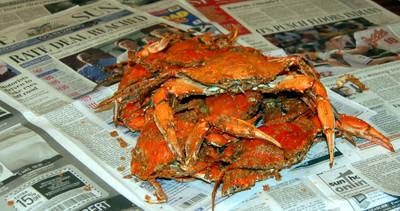 April_21_crabs_4