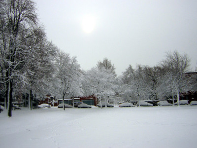 Snow_sumpter_park_feb_12_2006