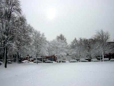 Snow_sumpter_park_feb_12_2006