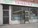 Trinacrias